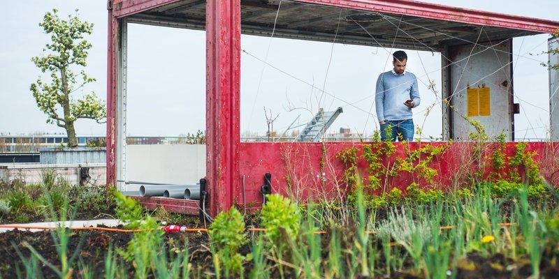 let it grow silke tijkotte royal floraholland incubator startups
