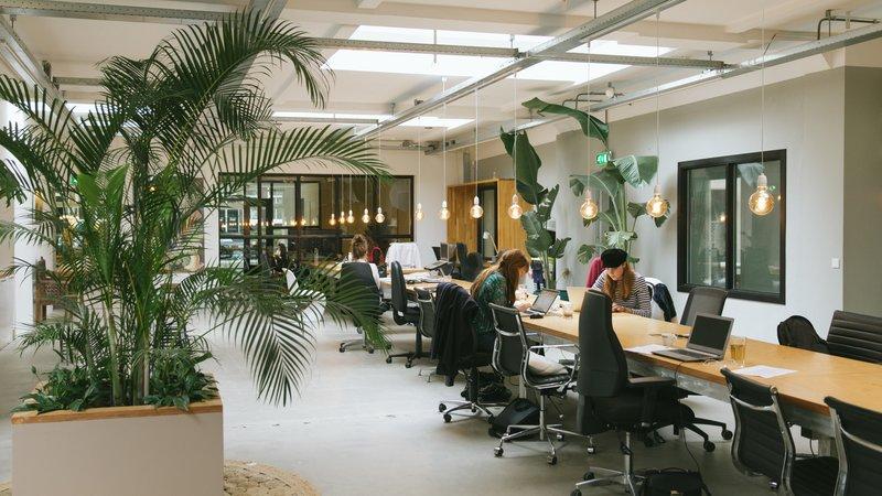 In de rubriek The Office belichtSprout de mooiste, hipste, gaafste kantoorruimtes van Nederland. In deze aflevering:productieve gezelligheid bij Het PR Bureau.