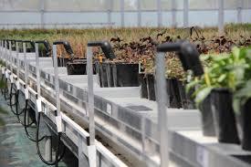 CEO: Marcel Koolen Plaats:Bergschenhoek Omzet 2016: 38.242 miljoen Gemiddelde groei (2012-2016): 10,8% Gemiddelde EBIT (2012-2016): 2,4% FTE: 131 Sinds 1958 levert Codema systemen voor de tuinbouwsector. Het hoofdkantoor staat in Bergschenhoek, niet zo heel ver verwijderd van het Westland, het tuinbouwmekka van Nederland. Maar het bedrijf timmert ook steving aan de weg in het buitenland. Codema zit ook in Japan, Iran, België en Canada.