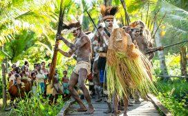 tribes, organisatie, leiderschap, stam, totem, danielle braun, corporate antropoloog