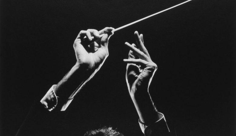 Ons brein heeft eigenlijk twee verschillende dirigenten, stelt burn-outcoach Rudi Francken. Het adaptieve gedeelte en het automatische gedeelte, die vechten om besturing van je brein. Maar wie trekt aan welke touwtjes?