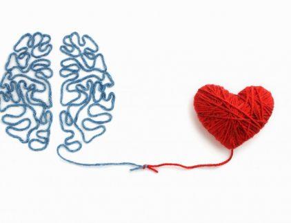 brein nieuw leiderschap MT