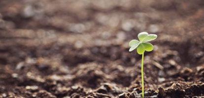 hoop vertrouwen groei MT
