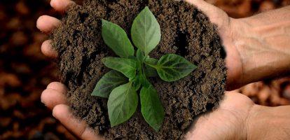Duurzaamheid FMG bedrijven