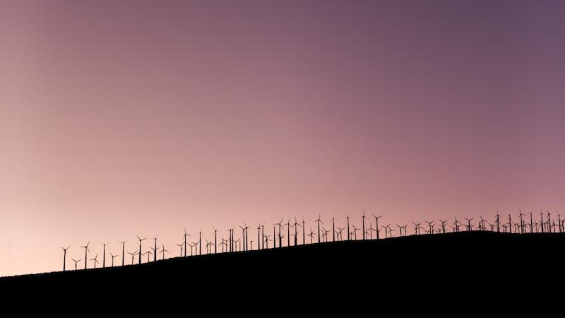 Als verduurzamer werd MT-columnist René Notenbomer bij verrast door de voorspellingen van futuroloog Marcel Bullinga. Maak kennis met de wereld van geprint labvlees en lokale energie-corporaties.