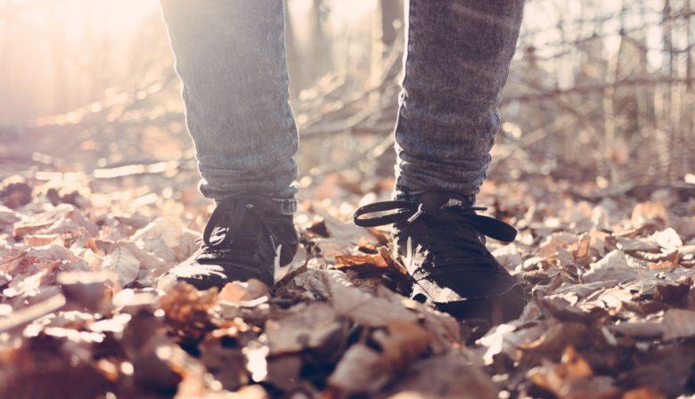 herfst wandelen