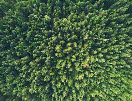 duurzaam businessmodel duurzaamheid circulair