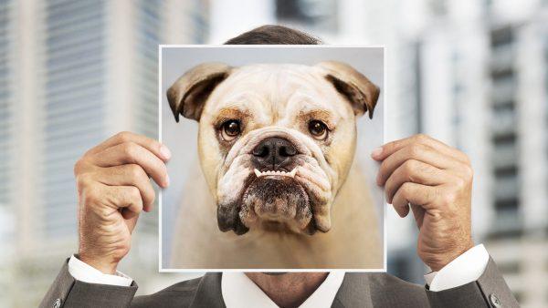 man met foto van bulldog
